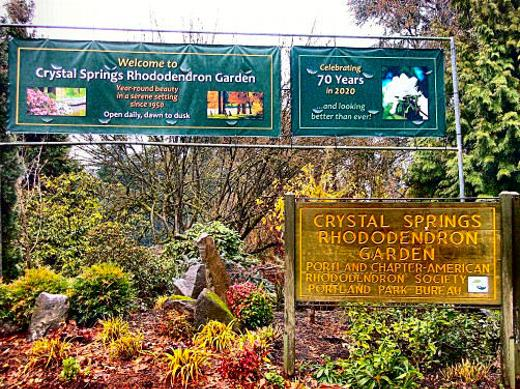 Portland Rhododendron Garden, Portland Parks, volunteers, 28th Avenue, Reed College, Southeast Portland, Oregon