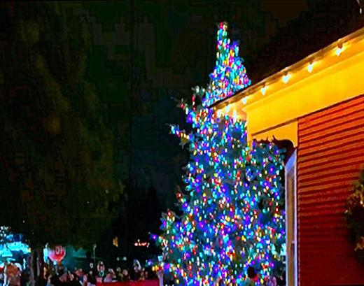 Woodstock neighborhood, Christmas tree, tree lighting, Southeast Portland, Oregon